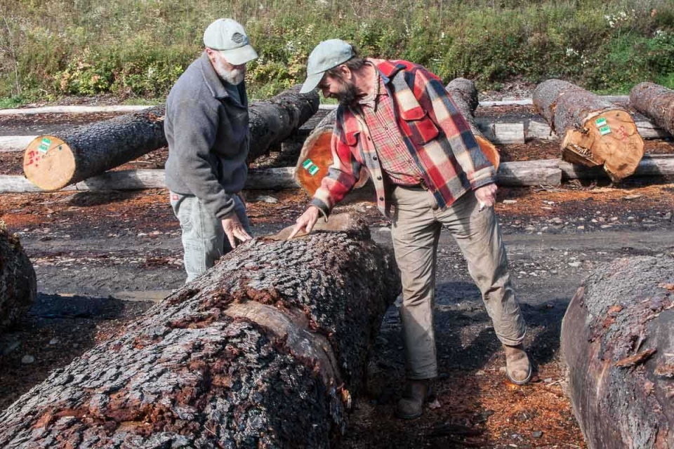 Lou and Max evaluating logs